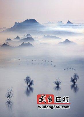 梦境天鹅湖