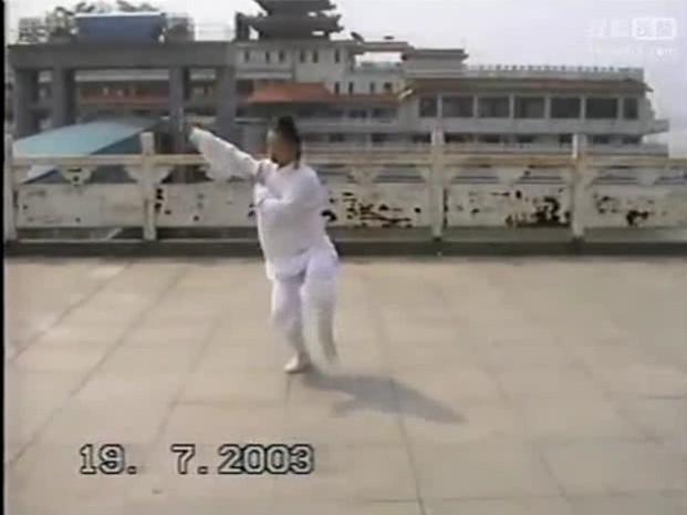 太乙玄武拳 表演:陈