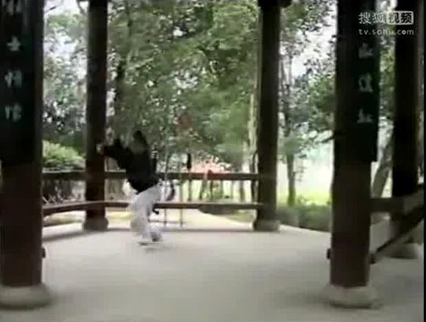 八卦掌 表演:陈师行