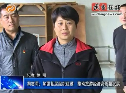 胡志莉:加强基层组织建设 推动旅游经济高质量发展