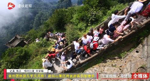 省外团体游几乎天天有!武当山景区跨省游客日渐增多