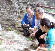 湖北省国土资源厅地质科学研究所李正琪教授莅临武当山指导工作